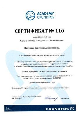 Grundfos Academy – Петухов Дмитрий Александрович